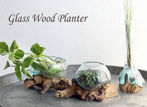 ガラスベース・フラワーベース・花瓶・流木・glassplanter/flowervase