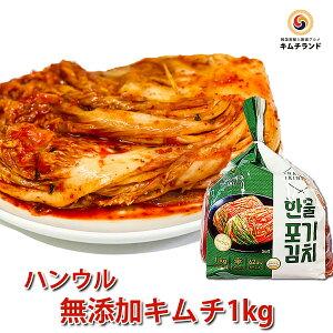 【無添加 白菜キムチ 1kg】 乳酸菌を味わう辛口熟成用 保存食 発酵食品 韓国産 ハンウル 韓国食品 韓国食材 韓国 食品 食料品 食べ物 たべもの キムチ 韓国キムチ きむち ご飯のお供 ご飯のお