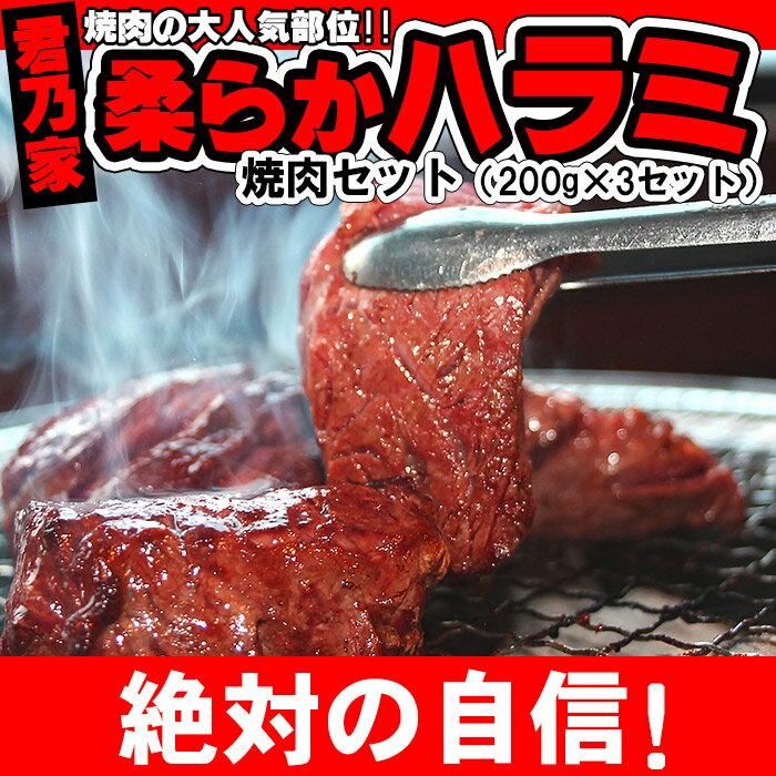 【豚ハラミ3パック付き】焼肉 セット 通販 材料 焼き肉 ハラミ バーベキュー焼肉セット ハラミさがり 牛ハラミ 【牛ハラミ600g(200g×3)】