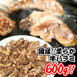 国産 牛ハラミ 600g 200g×3 焼肉セット牛肉 バーベキュー BBQ はらみ 通販 国産牛使用