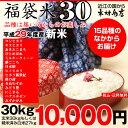 【新米!】【福袋30】玄米のまま30kgもしくは精米済み白米27kg【平成29年・滋賀県産】【送料無料】1袋でのお届けとなります!(ゆうパッ…