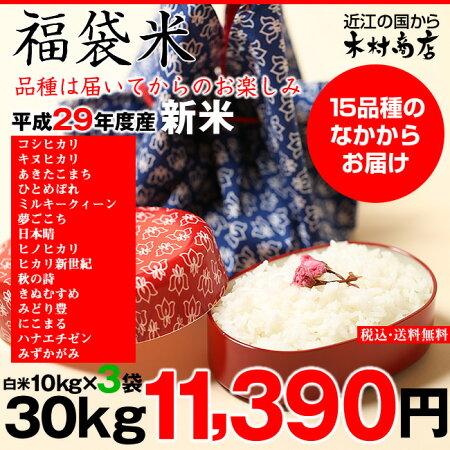 【新米:福袋米】白米30kg(10kg×3袋)【平成29年産:滋賀県産】【送料無料】