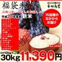 【新米!】【福袋米】 白米 30kg(10kg×3袋)【平成29年産:滋賀県産】【送料無料】