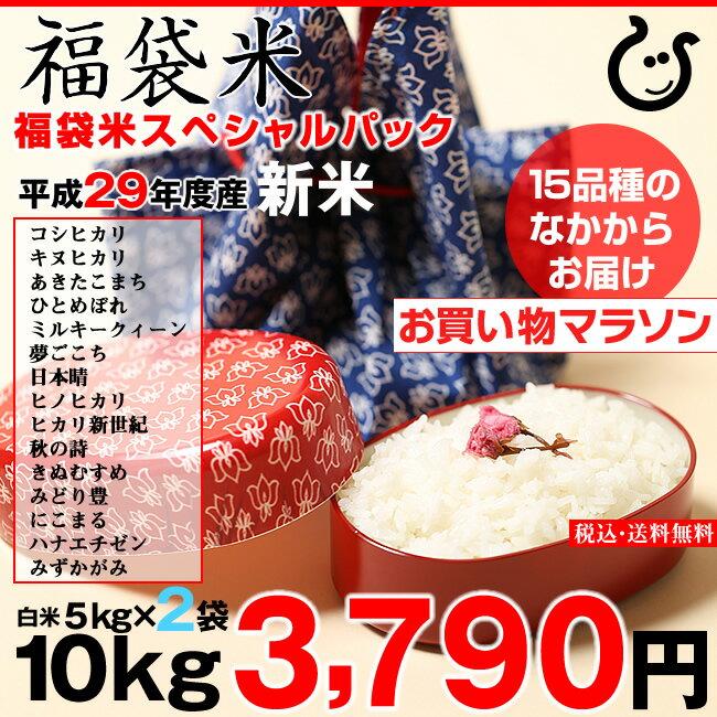 【新春!特別セール】【福袋米 スペシャルパック】 白米5kg×2袋 【平成29年:滋賀県産】【送料無料】