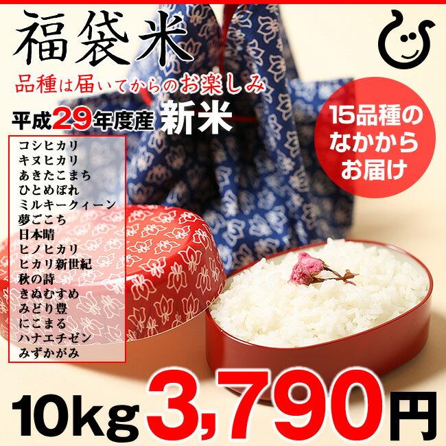 【福袋米】 白米 10kg【平成29年・滋賀県産】10kg×1袋でのお届けです♪】【送料無料】