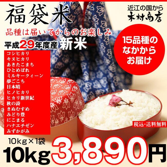 【福袋米】 白米 10kg【平成29年・滋賀県産】10kg×1袋でのお届けです♪】【送料無料】(西濃運輸に限る)