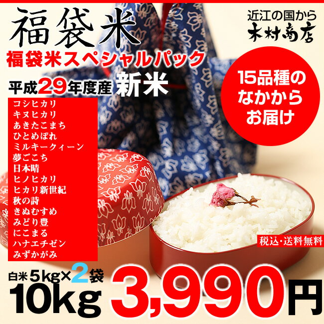 【新米!】【福袋米 スペシャルパック】 白米5kg×2袋 【平成29年:滋賀県産】【送料無料】