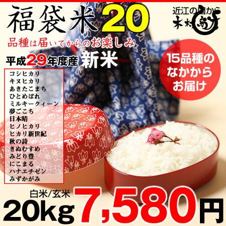 【新米!】【福袋20】玄米のまま20kgもしくは精米済み白米20kg【平成29年・滋賀県産】【送料無料】1種類でのお届けとなります!