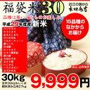 【福袋30】玄米のまま30kgもしくは精米済み白米27kg【平成29年・滋賀県産】【送料無料】1袋でのお届けとなります!(ゆうパックに限る)