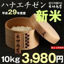 【新米!】ハナエチゼン 10kg【平成29年・滋賀県産】