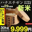 【新米!】ハナエチゼン 玄米のまま30kgもしくは精米済み白米27kg【平成29年・滋賀県産】