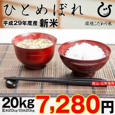 ひとめぼれ環境こだわり米玄米のまま20kgもしくは精米済み白米20kg【平成29年・滋賀県産】【送料無料】