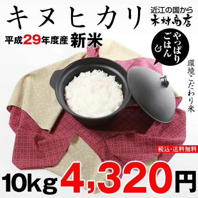 【新米!】キヌヒカリ 環境こだわり米 10kg【平成29年・滋賀県産】【あす楽対応♪】【送料無料】