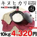 キヌヒカリ 10kg 送料無料 29年【滋賀県産】【あす楽対応!】