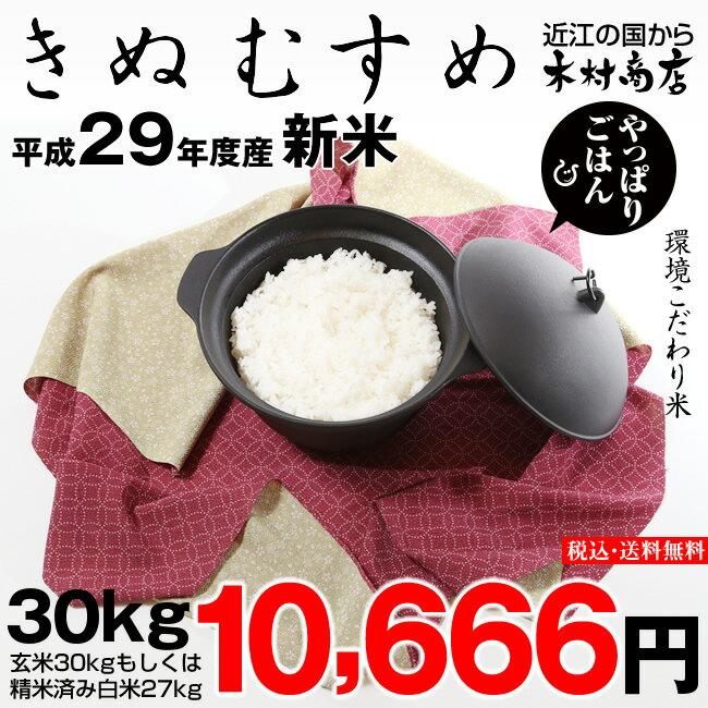 きぬむすめ 環境こだわり米 玄米のまま30kgもしくは精米済み白米27kg【平成29年・滋賀県産】【ゆうパックに限ります】