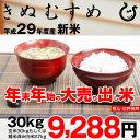 【初荷セール♪】きぬむすめ 環境こだわり米 玄米のまま30kgもしくは精米済み白米27kg【平成29年・滋賀県産】【ゆうパックに限ります】