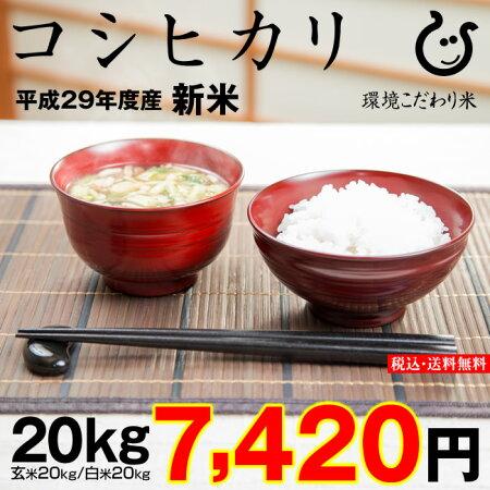コシヒカリ20kg送料無料新米29年玄米20kgまたは精米済み白米20kg【滋賀県産】