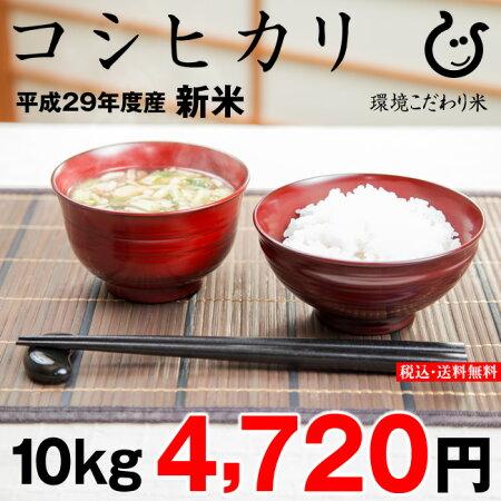 【新米】コシヒカリ10kg【平成29年:滋賀県産】あす楽対応♪【送料無料】
