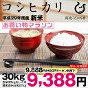 コシヒカリ 30kg 送料無料 新米 29年 玄米のまま30kgまたは精米済み白米27kg【滋賀県産】