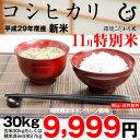 【新米!11月の特別米】コシヒカリ 環境こだわり米 玄米のまま30kgもしくは精米済み白米27kg【平成29年・滋賀県産】【送料無料】