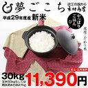 【新米!】夢ごこち 環境こだわり米 玄米のまま30kgもしくは精米済み白米27kg【平成29年・滋賀県産】