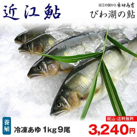 冷凍あゆ【近江鮎】1kg9尾【びわ湖名産】