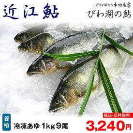 冷凍鮎 【近江鮎】 1kg 9尾 【びわ湖名産】