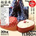 お米 新米【福袋30】玄米のまま30kgもしくは精米済み白米27kg【平成30年・滋賀県産】【送料無料】1袋でのお届けとなります!
