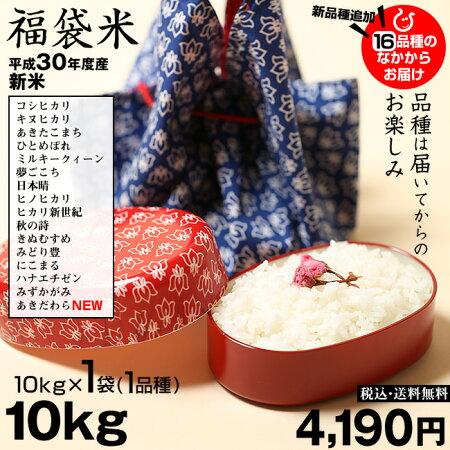 【新米!】【福袋米】白米10kg【平成30年産:滋賀県産】【送料無料】(西濃運輸に限る)