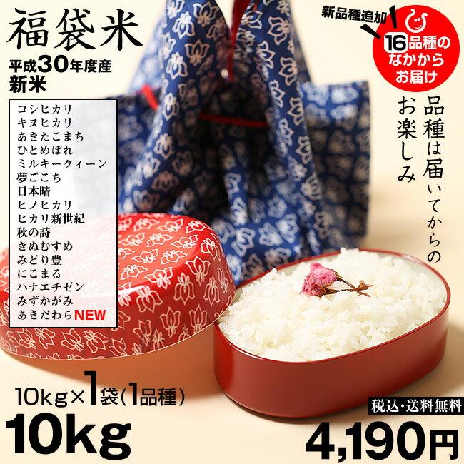 お米 新米 福袋米 白米 10kg 平成30年産 滋賀県産 送料無料