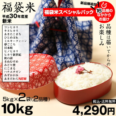 【新米!】【福袋米スペシャルパック】白米5kg×2袋【平成30年:滋賀県産】【送料無料】(ゆうパックに限る)