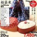 【福袋20】 玄米のまま20kgもしくは精米済み白米20kg 2018 【平成30年:滋賀県産】 送料無料 1種類でのお届けとなります♪