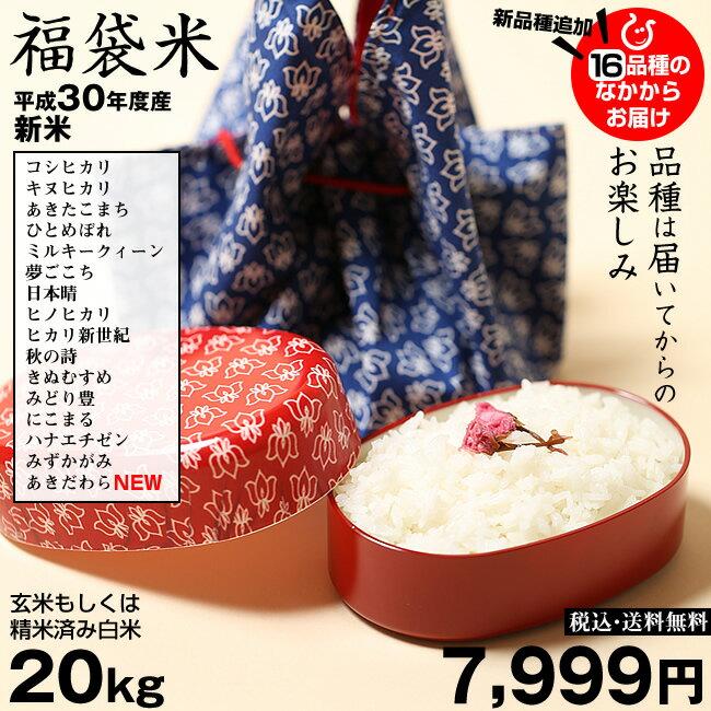 新米! 【福袋米】 20kg(10kg×2袋)【平成30年産:滋賀県産】 送料無料