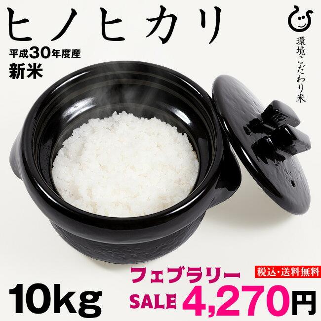 【フェブラリーSALE】 ヒノヒカリ 環境こだわり米 10kg(5kg×2袋)【平成30年:滋賀県産】