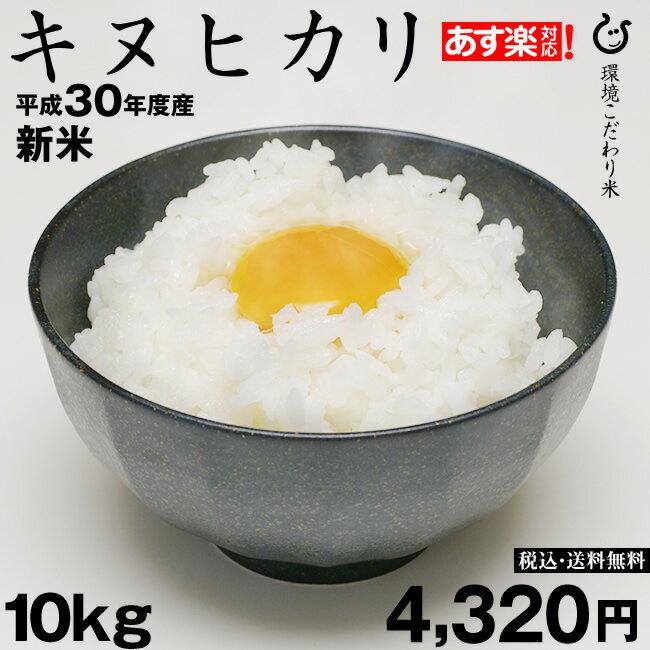 米 お米 新米 キヌヒカリ 10kg×1袋 平成30年度 滋賀県産 きぬひかり
