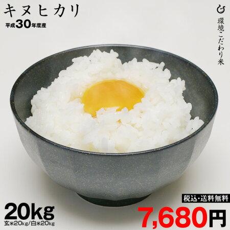 キヌヒカリ新米玄米20kg×1袋送料無料平成30年産玄米20kg【滋賀県産】