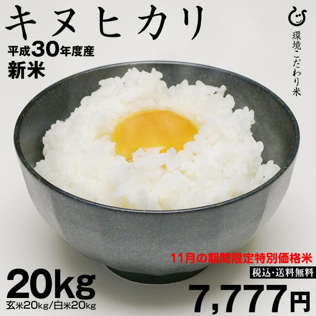 新米!【11月の特別米】 キヌヒカリ 環境こだわり米 玄米のまま 20kgもしくは精米済み白米20kg【平成30年:滋賀県産】送料無料