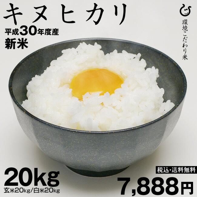お米 新米 【9月の特別米】キヌヒカリ 玄米のまま 20kgもしくは精米済み白米20kg 環境こだわり米【平成30年:滋賀県産】