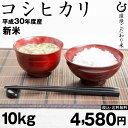 お米 新米 コシヒカリ 10kg 平成30年 滋賀県産 あす楽対応 送料無料 こしひかり