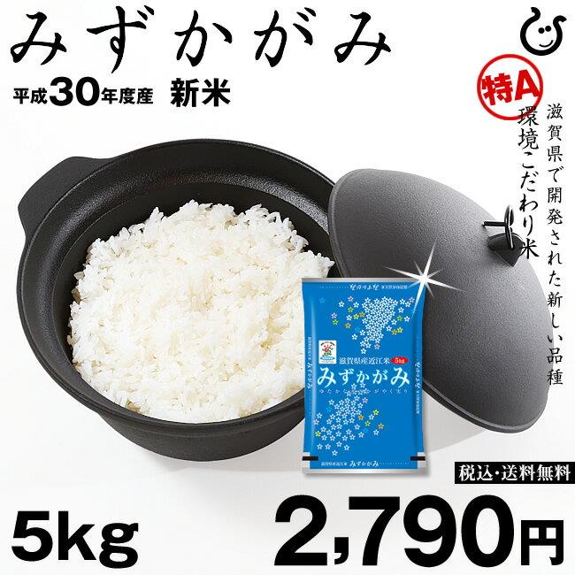 米 お米 新米 みずかがみ 5kg 環境こだわり米 平成30年度 滋賀県産 3年連続 特A獲得