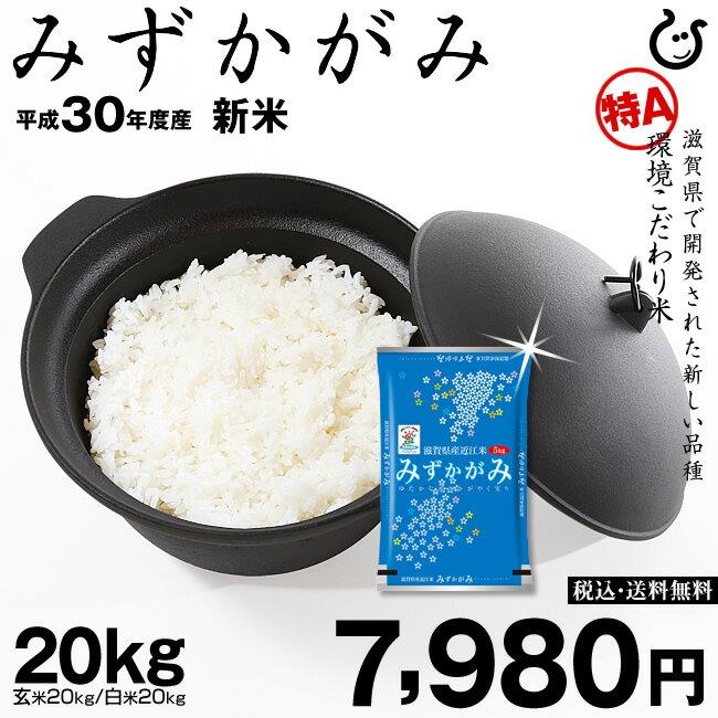 みずかがみ 玄米のまま 20kgまたは精米済み白米 20kg 環境こだわり米 【平成30年度:滋賀県産】 3年連続特A獲得