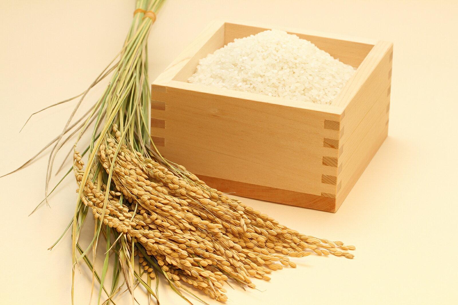 コシヒカリ 環境こだわり米 玄米のまま 30kg 送料無料 無農薬 2018【平成30年・滋賀県産】
