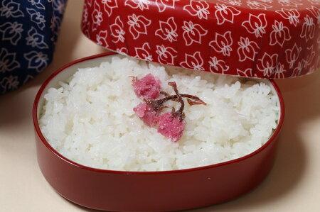 秋の詩環境こだわり米玄米20kgもしくは精米済み白米20kg【平成29年:滋賀県産】【送料無料】