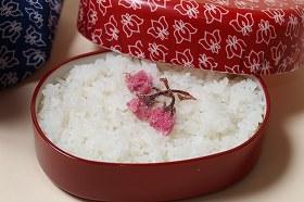 ミルキークイーン10kg環境こだわり米【令和元年:滋賀県産】【送料無料】出荷日お選びいただけます♪