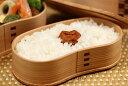 あきたこまち 環境こだわり米 玄米 5kg【平成28年・滋賀県産】