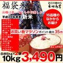 【福袋米 スペシャルパック】 白米5kg×2袋 【平成28年:滋賀県産】【送料無料】