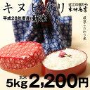 キヌヒカリ 環境こだわり米 5kg【平成28年・滋賀県産】