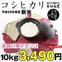 【無洗米】コシヒカリ 10kg【平成28年:滋賀県産】