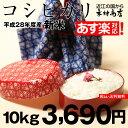 コシヒカリ 10kg【平成28年:滋賀県産】あす楽対応♪【送料無料】