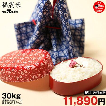 【新米!】【福袋30】玄米のまま30kgもしくは精米済み白米27kg【平成30年・滋賀県産】【送料無料】1袋でのお届けとなります!(ゆうパックに限る)